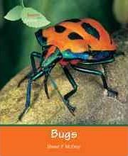 Insects Spiders: Bugs (Us)