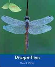 Insects Spiders: Dragonflies (