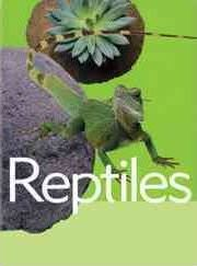 Reptiles (Animal Facts)