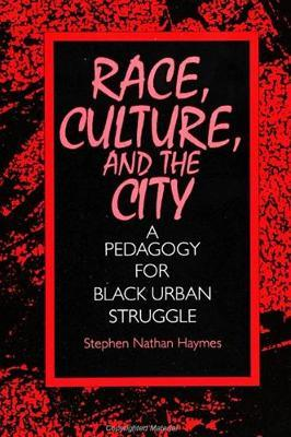 Race, Culture, and the City