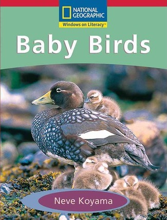 Windows on Literacy Emergent (Science: Life Science): Baby Birds