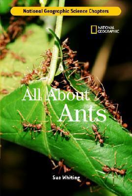 Science Chapters: All about Ants