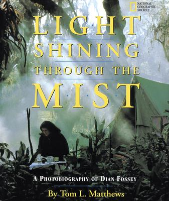 A Light Shining Through the Mist
