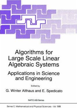 Algorithms for Large Scale Linear Algebraic Systems: