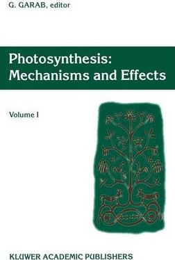 Photosynthesis: Mechanisms and Effects
