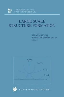 Large Scale Structure Formation