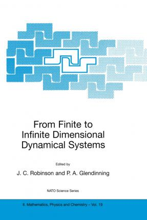 From Finite to Infinite Dimensional Dynamical Systems
