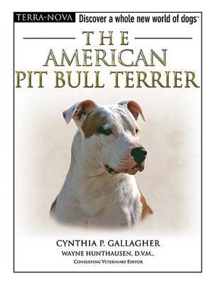 STAFFORDSHIRE BULL TERRIER - BEST OF BREED