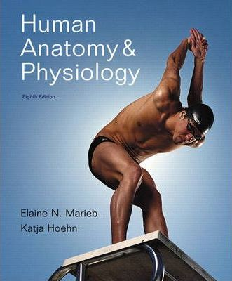 Human Anatomy And Physiology With Interactive Physiology 10 System