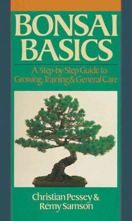 Bonsai Basics : A Step-by-Step Guide to Growing, Training & General Care