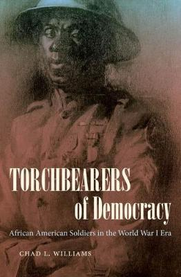 Torchbearers of Democracy  African American Soldiers in the World War I Era