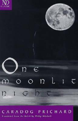 One Moonlit Night: Novel