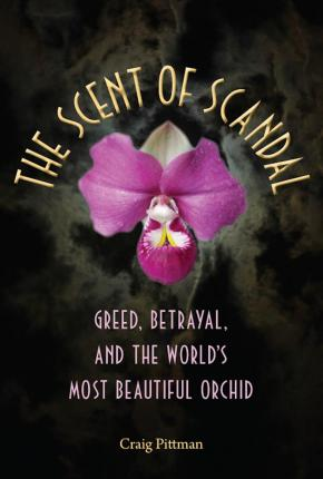 The Scent of Scandal