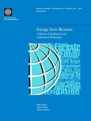 Energy from Biomass : A Review of Combustion and