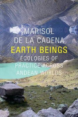 earth beings ecologies of practice across andean worlds pdf