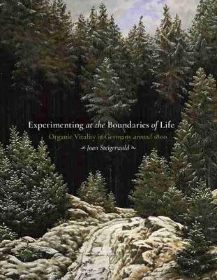 Experimenting at the Boundaries of Life