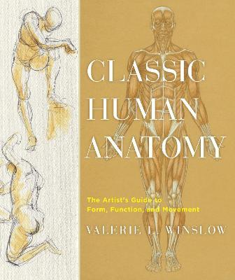 The Artists Guide To Human Anatomy Pdf