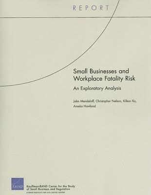 Small Businesses and Workplace Fatality Risk  an Exploratory Analysis
