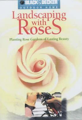 Landscaping with Roses  Planting Rose Gardens of Lasting Beauty