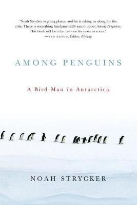 Among Penguins