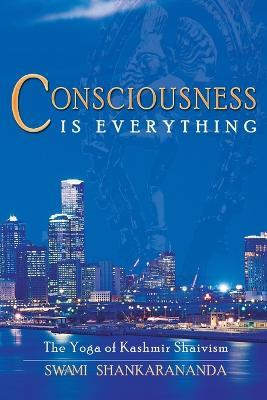 Consciousness is Everything