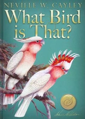 What Bird is That?