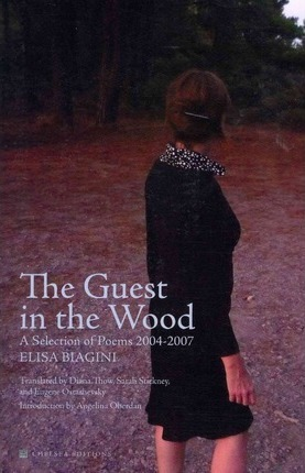 The Guest in the Wood: A Selection of Poems 2004-2007