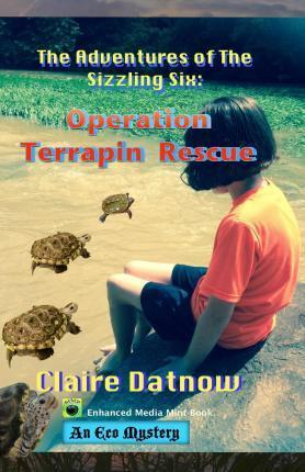 The Adventures of the Sizzling Six: Operation Terrapin Rescue