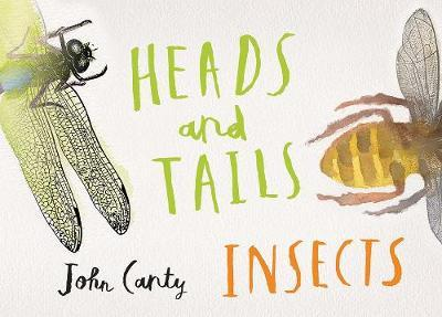 Heads and Tails Insects