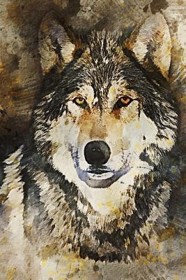 Wild Wolf Illustration Journal  150 Page Lined Notebook/Diary