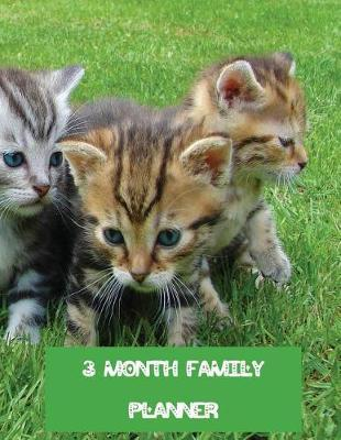 3 Month Family Planner  Cute Kittens undated weekly diary and organizer for 13 weeks to keep track of everyone's plans