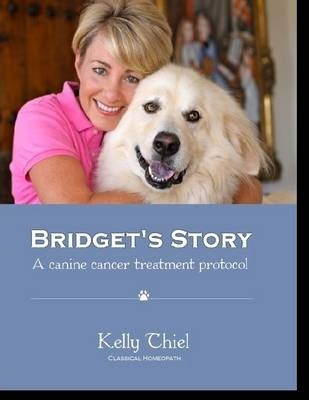 Bridget's Story - A Canine Cancer Treatment Protocol