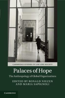 Palaces of Hope  The Anthropology of Global Organizations