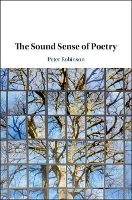 The Sound Sense Of Poetry Peter Robinson 9781108422963