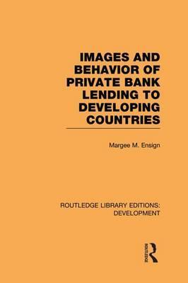 Images and Behaviour of Private Bank Lending to Developing Countries