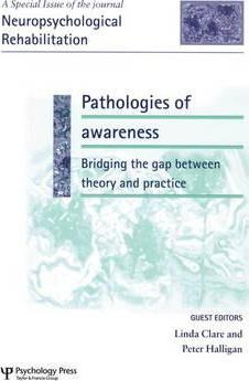 Pathologies of Awareness: Bridging the Gap Between Theory and Practice