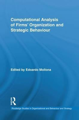 Computational Analysis of Firms' Organization and Strategic Behaviour