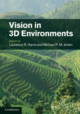 Vision in 3D Environments
