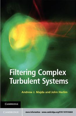 Filtering Complex Turbulent Systems