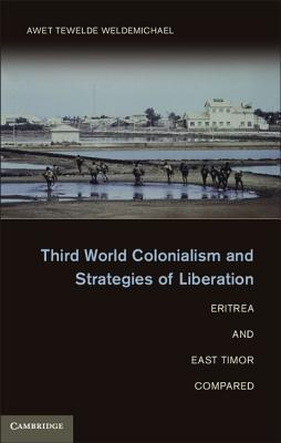 Third World Colonialism and Strategies of Liberation