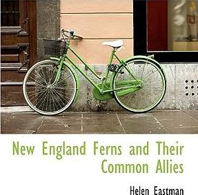 New England Ferns and Their Common Allies