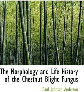 The Morphology and Life History of the Chestnut Blight Fungus