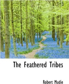 The Feathered Tribes