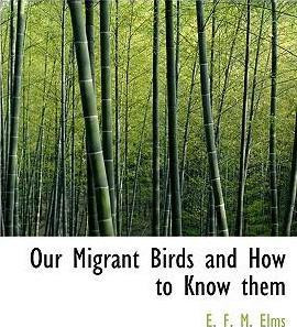 Our Migrant Birds and How to Know Them