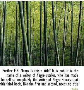 Further E.K. Means Is This a Title? It Is Not. It Is the Name of a Writer of Negro Stories, Who Has Made Himself So Completely the Writer of Negro Stories That This Third Book, Like the First and Second, Needs No Title
