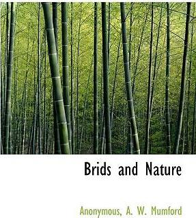 Brids and Nature