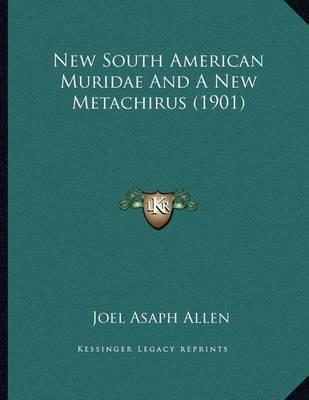 New South American Muridae and a New Metachirus (1901)