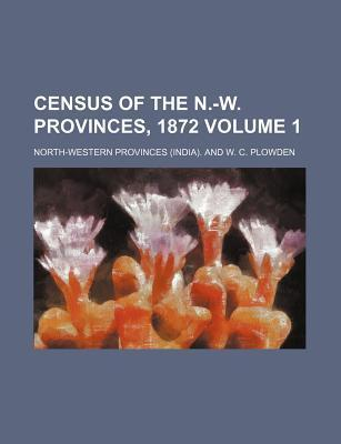 Census of the N.-W. Provinces, 1872 Volume 1