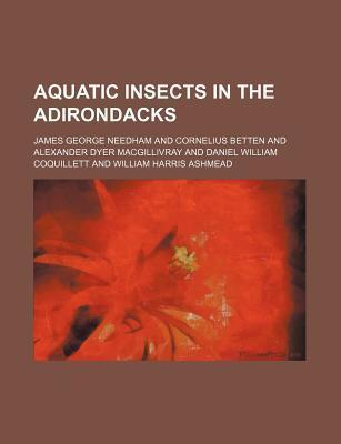 Aquatic Insects in the Adirondacks