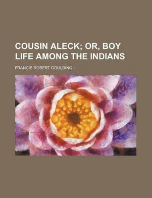 Cousin Aleck; Or, Boy Life Among the Indians